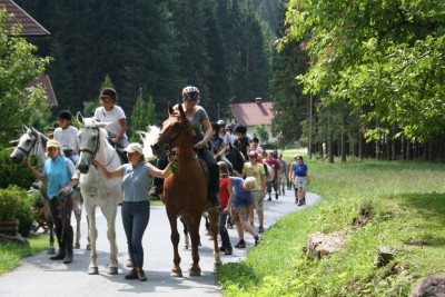 Paardrijden: Manege Schneider