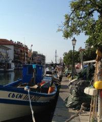 Culture: Harbour, Grado