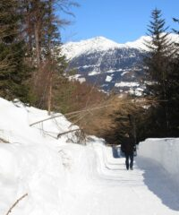 Wandelen: Geotrail Laas
