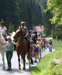 Pferdreiten: Reitschule Schneider